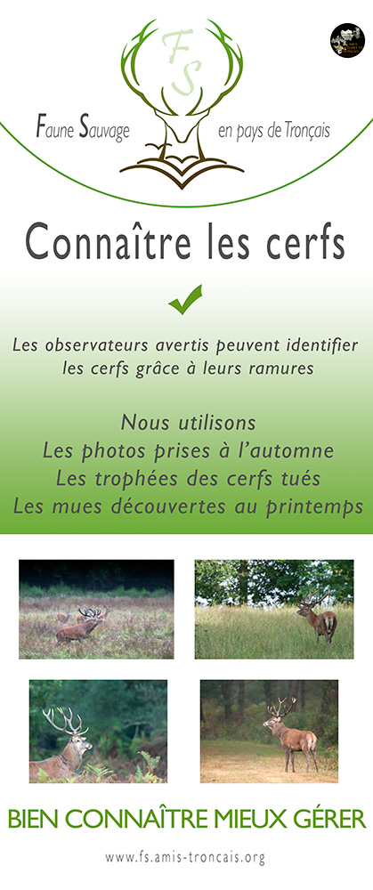 Action N°1 Faune Sauvage 2017