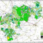 Indices brame en forêt de Tronçais 2018