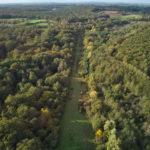 Brame 2019 en forêt de Tronçais